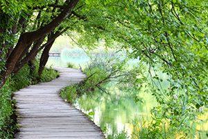 Selbstheilungskräfte aktivieren und ganzheitlich weiterentwickeln in Aargau in der Schweiz